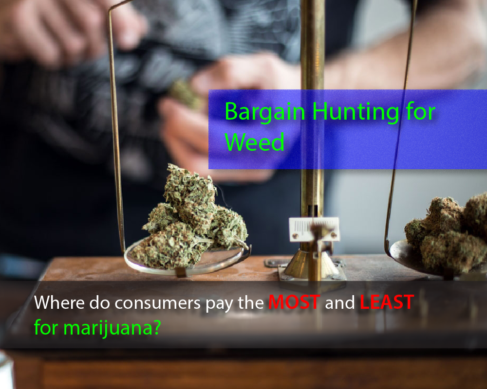 Bargain Hunting for Weed, CBD Medical Journal