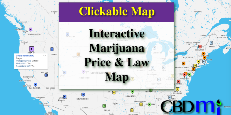 Medical Marijuana Price Index and Laws | An Interactive Map